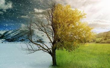 Resultado de imagen de primavera, invierno